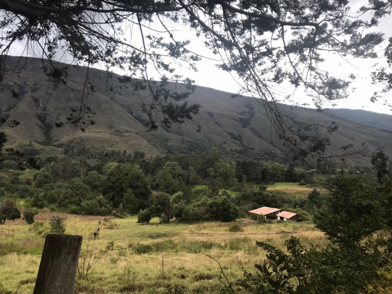 lotes villa de leyva (2)